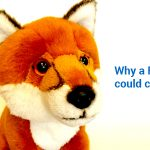 Why a FoxPro Conversion could cause you problems If