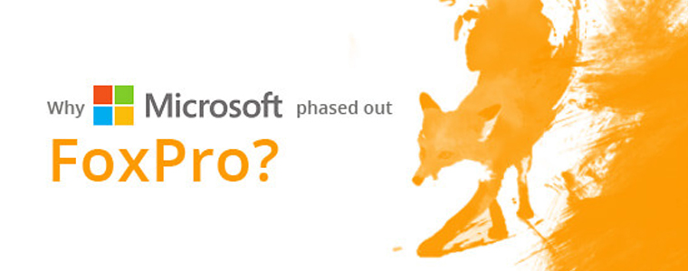 Microsoft's Move from FoxPro to .NET
