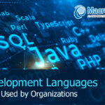 What Are The Different Development Languages Being Used By Organizations Besides VFP?